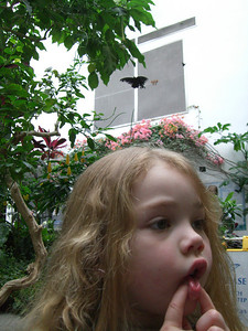 That's my little thinker (haha)...in the butterfly room while visiting the Pacific Science Center.