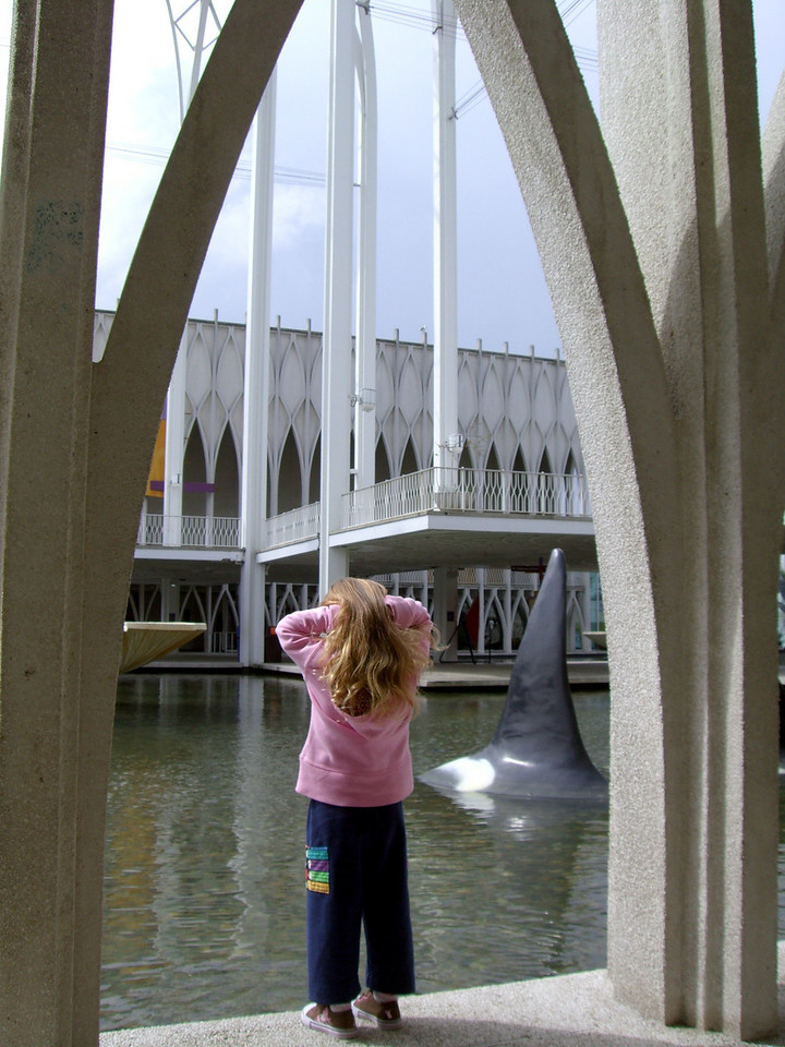 Contemplating the whale and water (at the Pacific Science Center).
