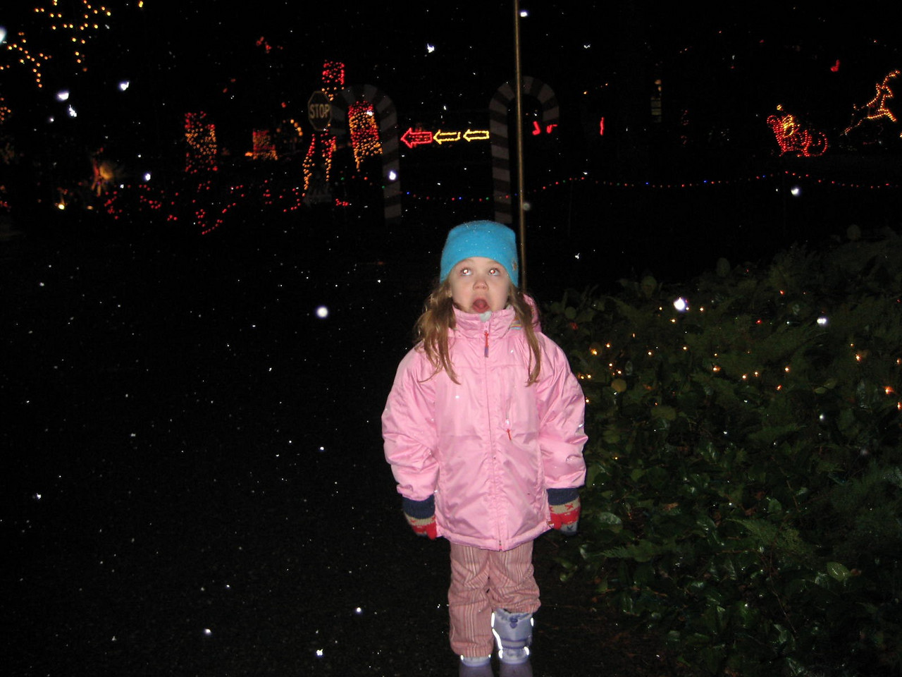Seeing the Christmas Lights show at Warm Beach (Dec. '08) - Kimber catching snowflakes on her tongue.