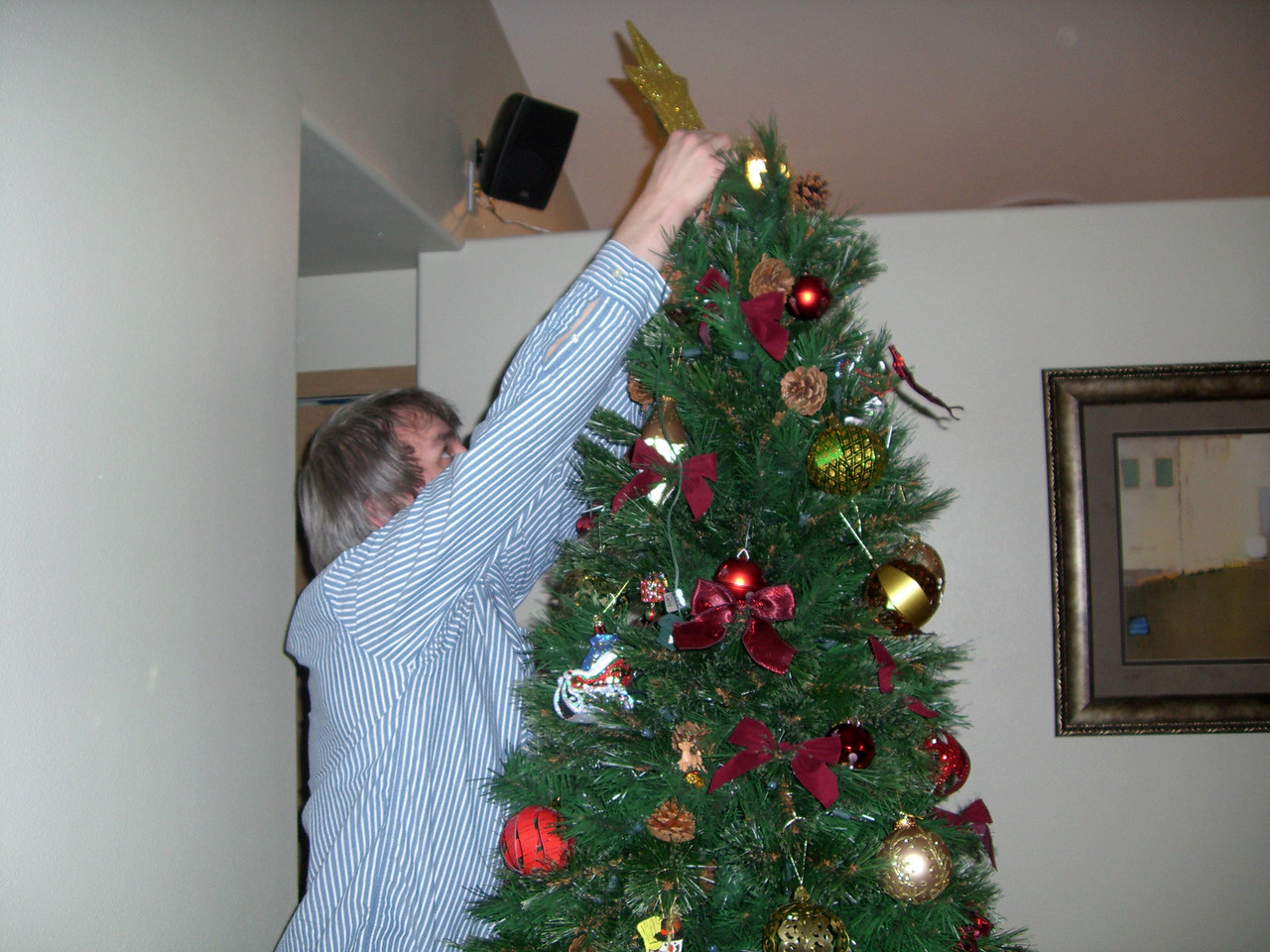 Decorating the Christmas tree (Dec. '08)!