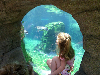 Watching the penguins swim.  Zoo trip with Grandmama Carol, Papa Ben, Whitney, Kimber and I (June '09).