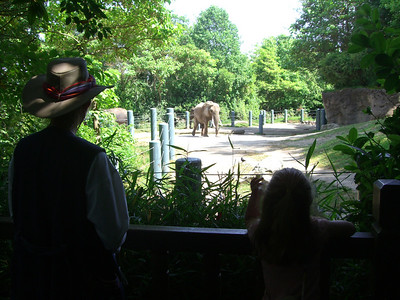 Elephants.  Zoo trip with Grandmama Carol, Papa Ben, Whitney, Kimber and I (June '09).
