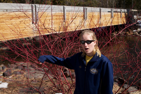 Sara liked the red-branched plants.