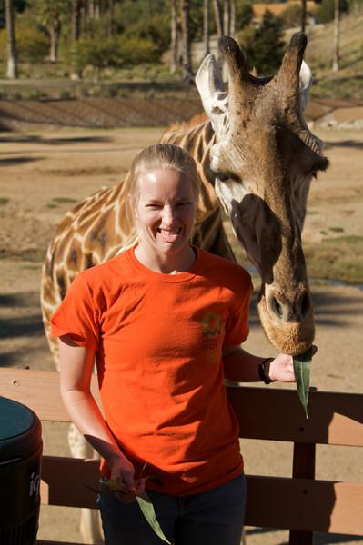 Sara liked the giraffes.