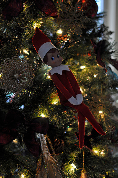 Day one of Ellken's magical moves...in the Christmas tree