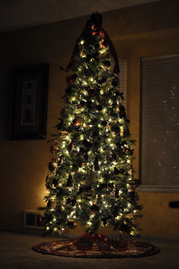 Nov '11 - Decorated Christmas tree