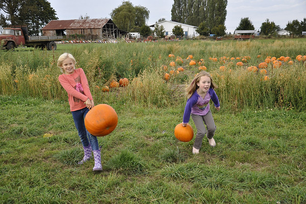 Oct. '11 - Pumpkin Farm