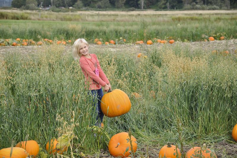 Oct. '11 - Pumpkin Farm