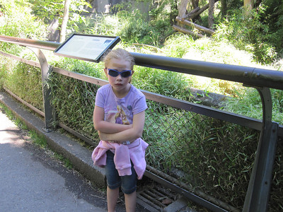 Woodland Park Zoo - standing next to the sign that assaulted her...still feeling a bit down in the dumps.