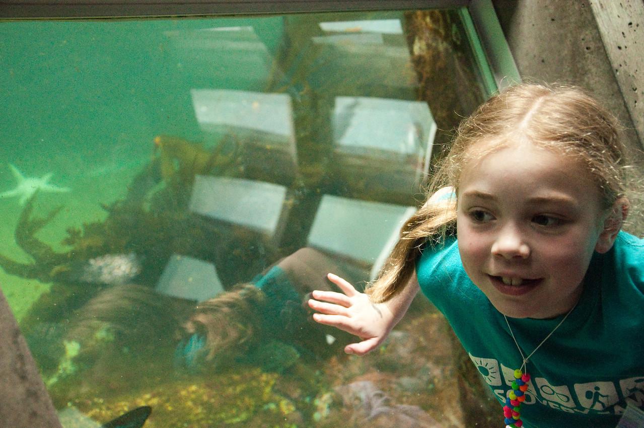 2012.05 - Aquarium.