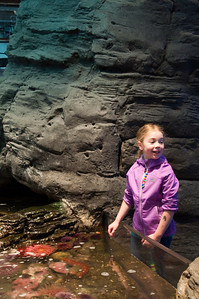 2012.05 - Aquarium. Excited about the touching ponds.
