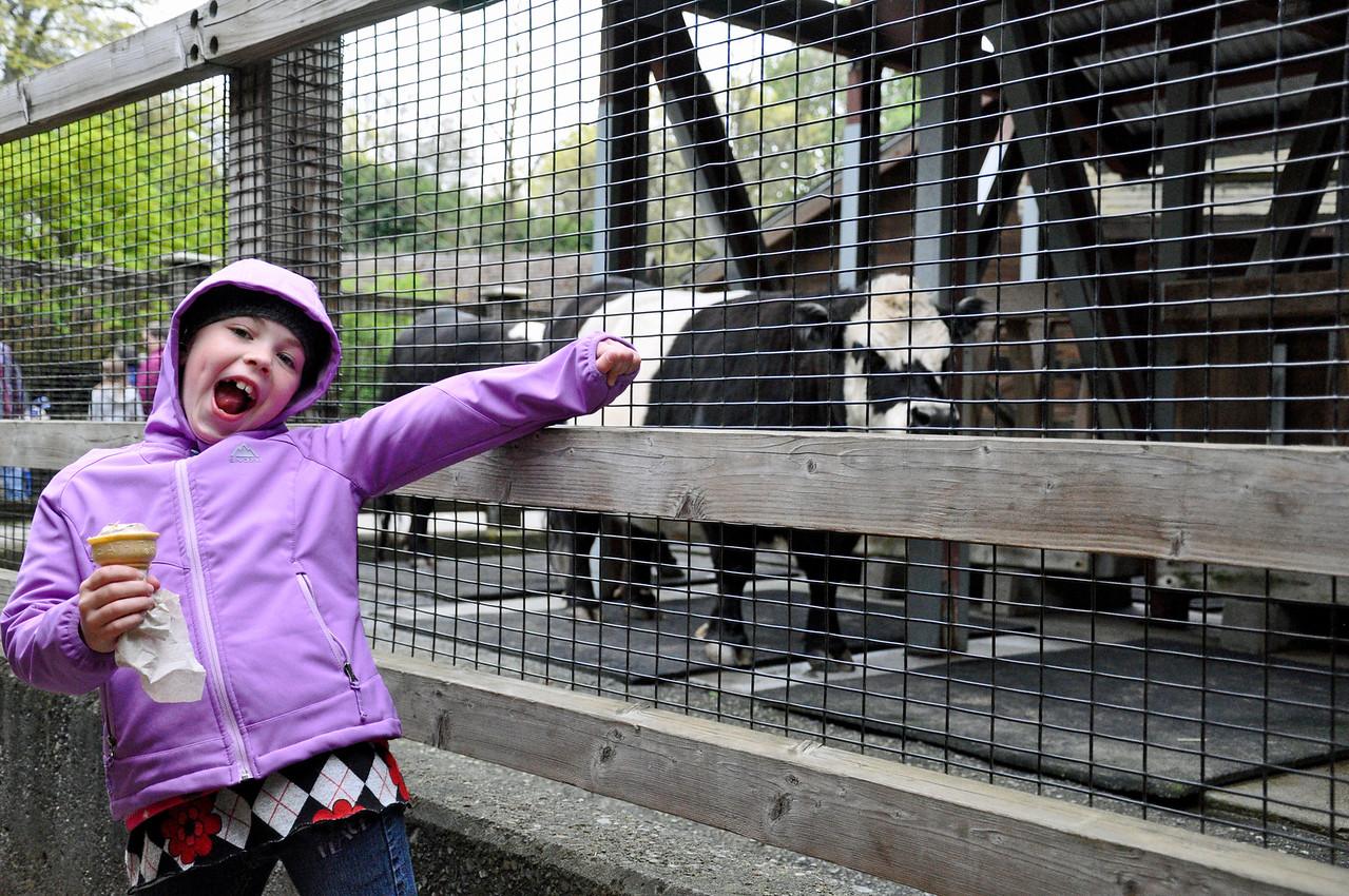 2012.04 - Zoo. Kimber at the farm animal exhibit.