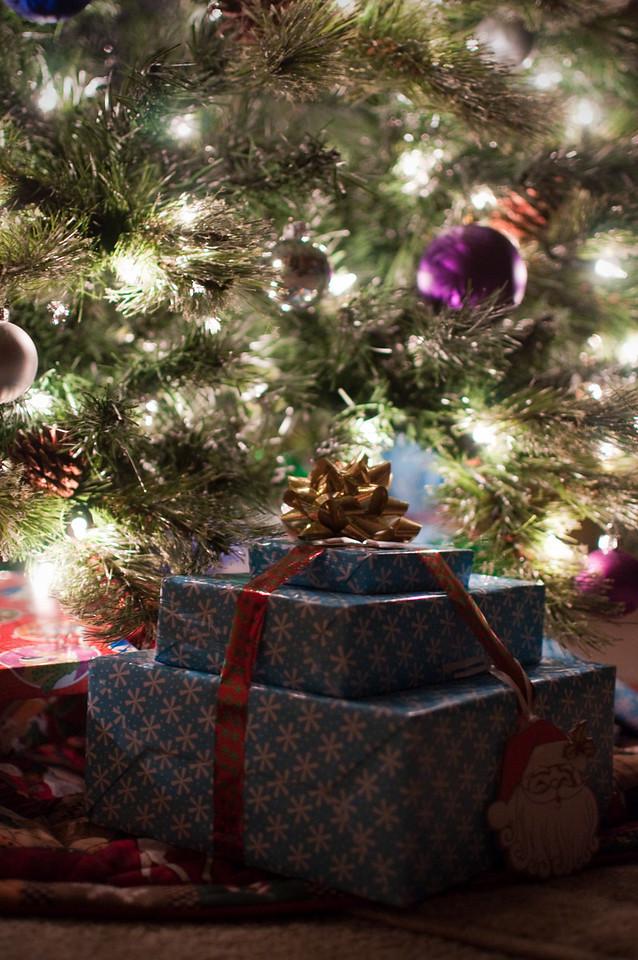 2012 Christmas - tree