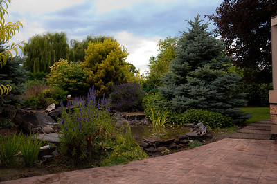 2012.06 - Ivory's birthday: wine tasting in Walla Walla. Backyard of the house we rented...a little waterfall into the pond made it very peaceful.