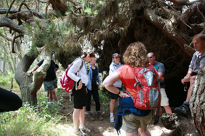 20130608 Hiking-29