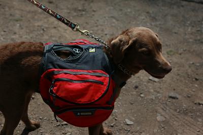 20130608 Hiking-9