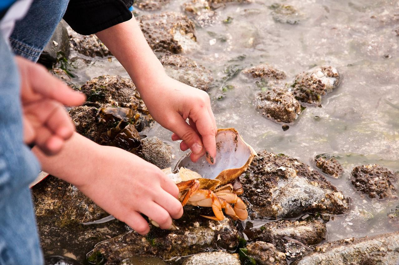 2013.05.28 - 3rd Grade field trip to Mukilteo Beach