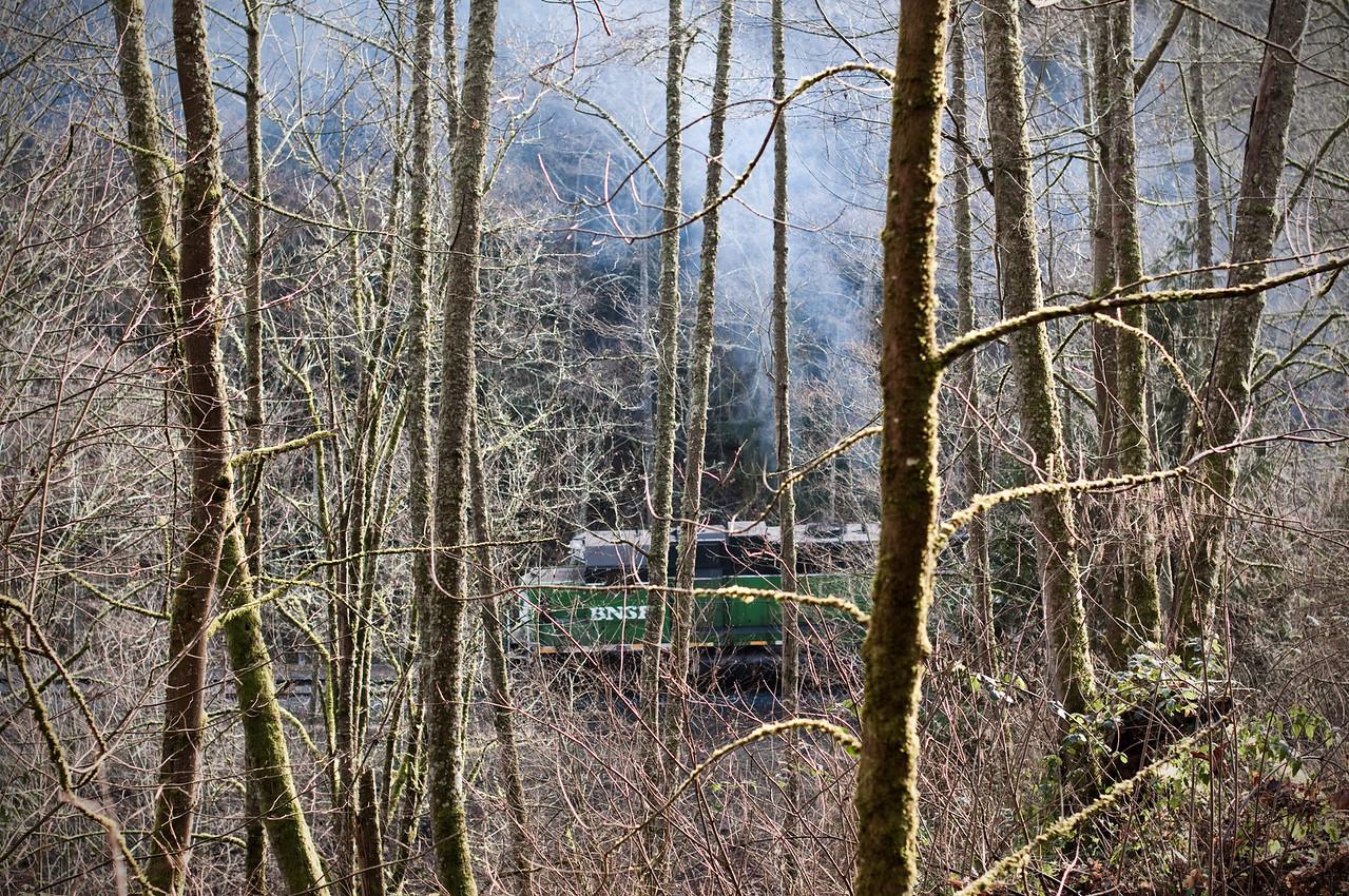 2013.02.10 - Japanese Gulch hike - train smoke
