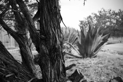 2013.03 - Trip to San Antonio
