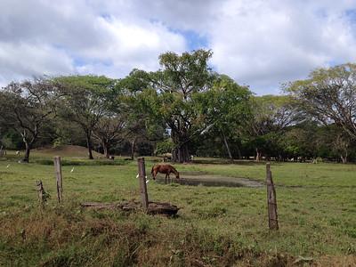 20131227_CostaRica-18