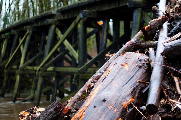 2014.01.12 - railroad tracks and bridge in Monroe