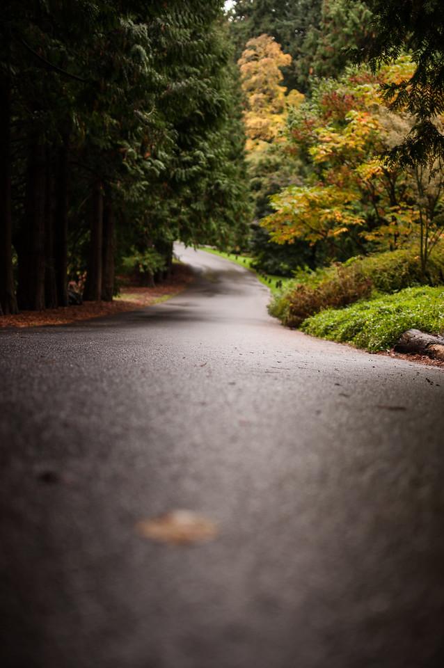 2014.10.18 - Arboretum