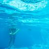 """<a href=""""http://www.blueflashphotography.com"""">http://www.blueflashphotography.com</a>"""