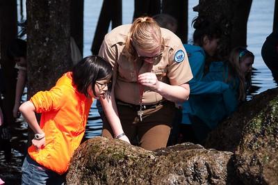 2014.04.20 - Fifth grade field trip to Edmonds Beach