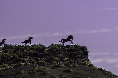 2015.07.06 - iron horses