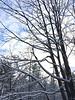 2017_Snow_Dec10-004