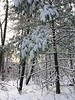 2017_Snow_Dec10-001