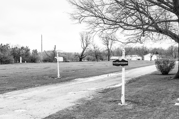 2017.03.31 - Forest Lawn Cemetery - Macomb, IL - Hilton and Martin grave sites are in the distance behind the signs from this vantage