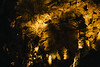 2017_CarlsbadCaverns_May6-022