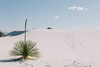 2017_WhiteSands_May8-010