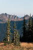 CindyGiovagnoli_Redwoods_CraterLake_MountRainier_PNW_National_Park_trees_camp_road_trip-009