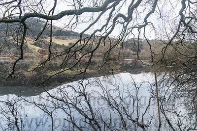 2018 Bawsinch Nature Reserve