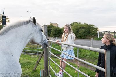 2018 Braid Horse