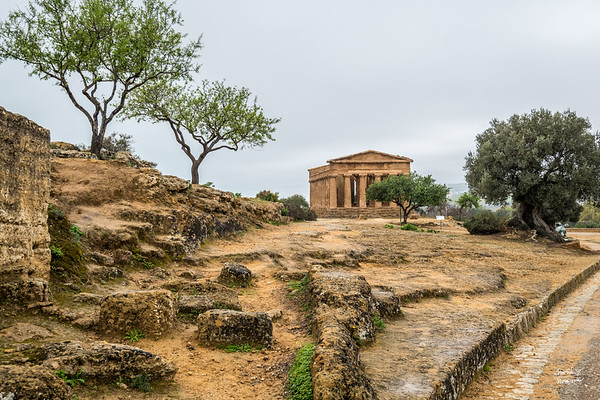 Here we are approaching the Temple of Concordia,  named after the Roman goddess of harmony.  First built in around 440BC, it is one of the best preserved Greek temples found anywhere in the world.