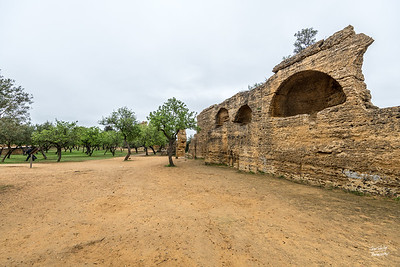 The citrus and olive trees were once an enormous swimming pool for the Ancient Greek inhabitants of Akragas. Eighteen tunnels fed the pool with water collected from higher ground that had been passed through a complex system of aqueducts.