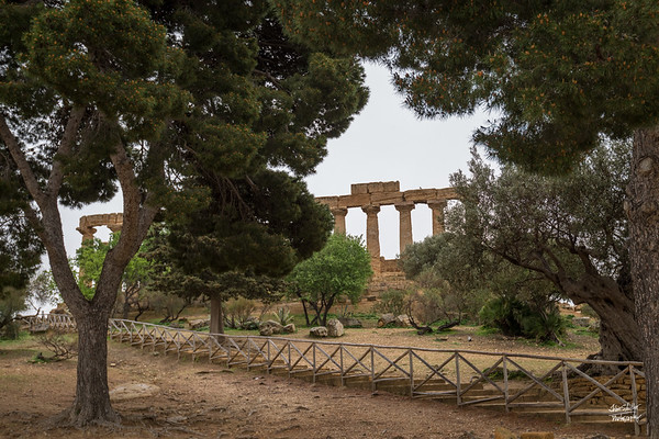 Welcome to Valle dei Templi - a Unesco World Heritage site of ancient ruins from the 6th centruy BC.  This is the Temple of Juno - the first of 3 temples at this site.