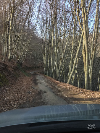 Our road thorugh the mountains to Serrastretta started out paved, then dirt, then a path that nearly disappeared in front of us.  Moments later, we found the main road.