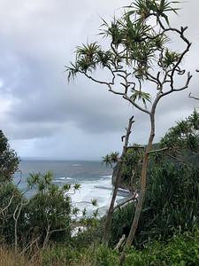 2019.01.29 - Hawaii. Pololu Valley Lookout hike.