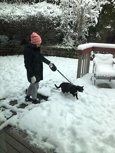 2020.01.14 - Snow