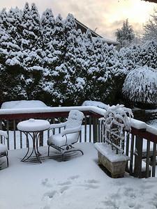 2020.01.13 - snow