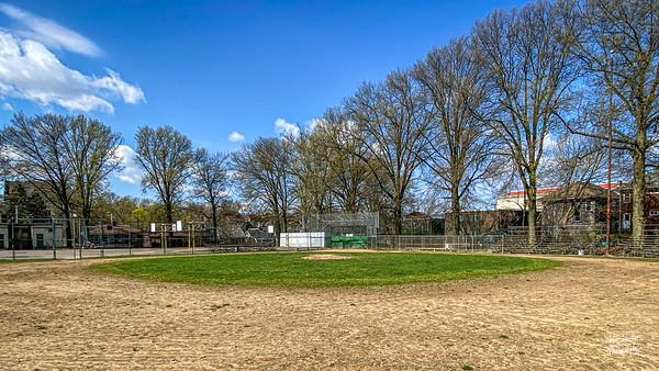Love the trees that guard Allderdice's baseball field