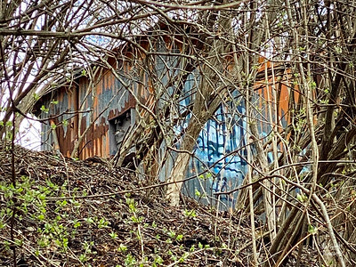 Found this colorful, aluminum-sided building structiure buried in and amongst the bamboo along the trail.