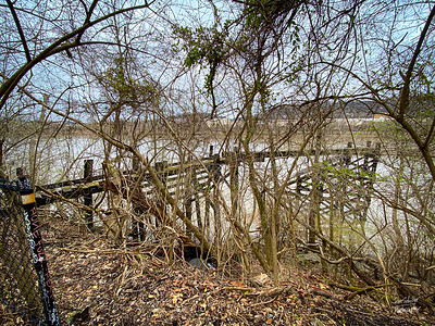 The Trail conceals a lot of Mon River history. No doubt an old dock from back in the Homestead Mill days.