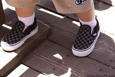 June 19, 2009  The monkey's first pair of Vans!