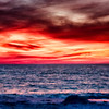 Turtle-0985_HDR-Edit