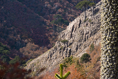 Valle de las Mellizas, Araucanía, Chile